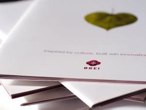 Brei Corporate Brochure Design