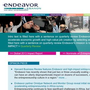 Endeavor Quarterly E-Newsletter Design