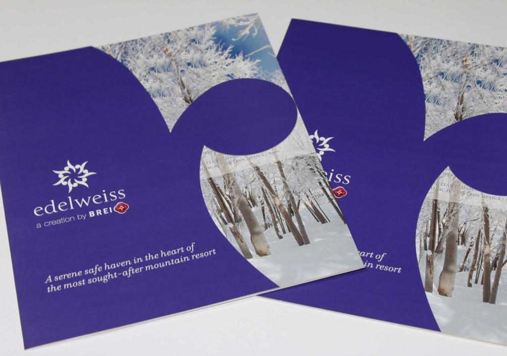 Edelweiss pamphlet design